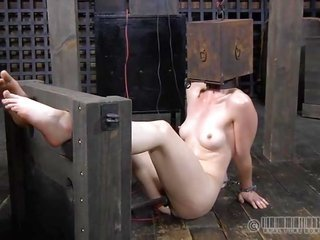 guide in cage is training 'coz slutty chick