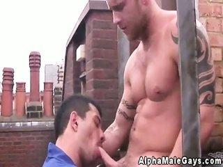 smoking heterosexual hunk rooftop sucking off